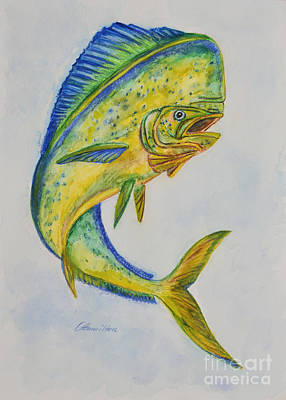 Painting - Mahimahi Watercolor  by Olga Hamilton