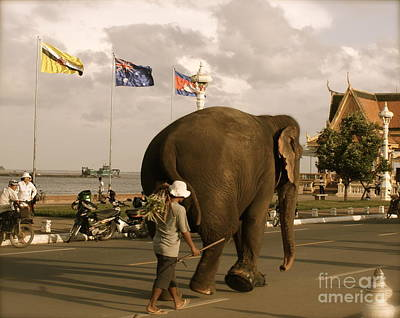 Photograph - Mahout And Elephant II by Louise Fahy