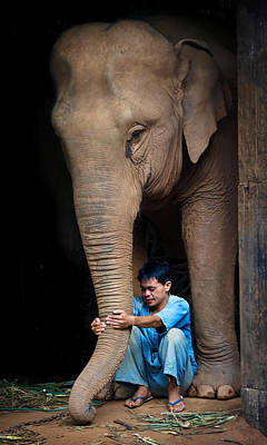 Lee Craker Royalty-Free and Rights-Managed Images - Mahout Em and his Elephant by Lee Craker
