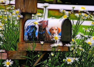 Mail From Labrador Art Print by Tim Coleman