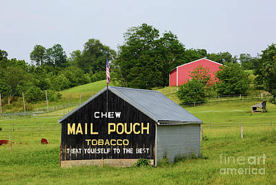 Photograph - Mail Pouch Barn In Rural Maryland by James Brunker