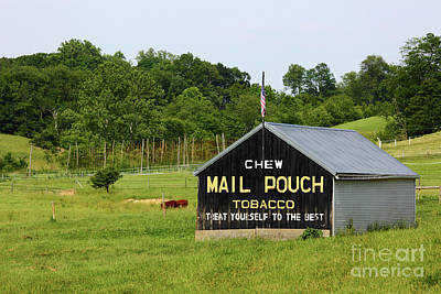 Photograph - Mail Pouch Tobacco Barn In Maryland by James Brunker