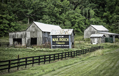 Mail Pouch Photograph - Mail Pouch Tobacco Barn by Phyllis Taylor