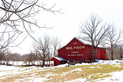 Photograph - Mail Pouch Tobacco Barn by Trina Ansel