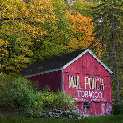Photograph - Mail Pouch Tobacco Square by Bill Wakeley