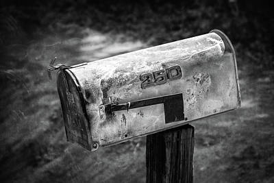 Photograph - Mailbox 250 El Camino Drive In Bw by YoPedro