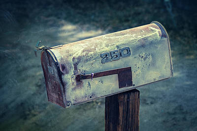 Photograph - Mailbox 250 El Camino Drive by YoPedro
