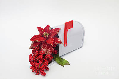 Photograph - Mailbox Cheer by Diane Macdonald