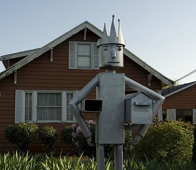 Photograph - Mailbox King by Sara Stevenson