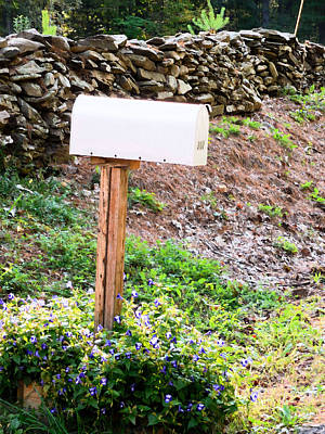Rural Decay Painting - Mailbox With Flowers In Countryside by Lanjee Chee