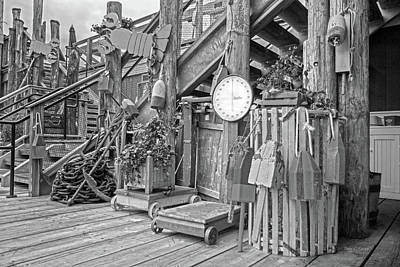 Maine Attraction Bw Art Print by Betsy Knapp