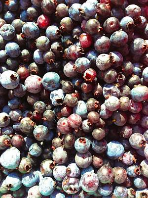 Photograph - Maine Blueberries by Polly Castor