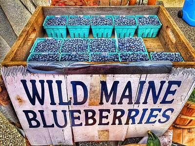 Photograph - Maine Blueberries by Susan Morrow