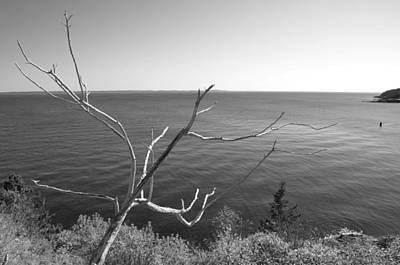 Art Print featuring the photograph Maine Coastline by Corinne Rhode