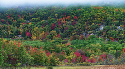 Photograph - Maine Colors by Gary Lengyel