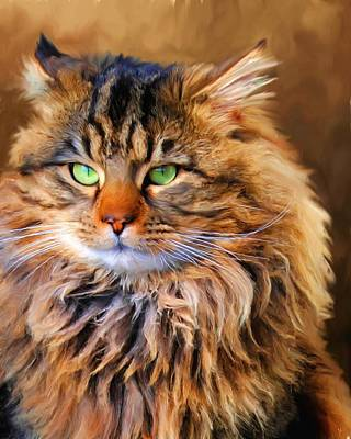 Painting - Maine Coon Cat by Jai Johnson
