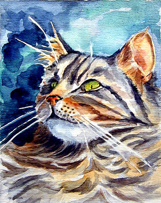 Maine Coon Cat Print by Lyn Cook