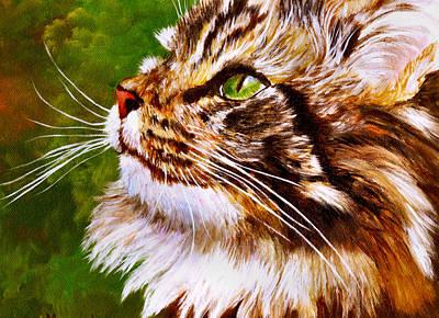 Maine Coon Cat Art Print by Mary Jo Zorad