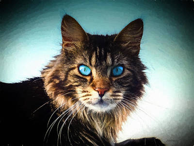 Painting - Maine Coon Cat - Painting by Ericamaxine Price