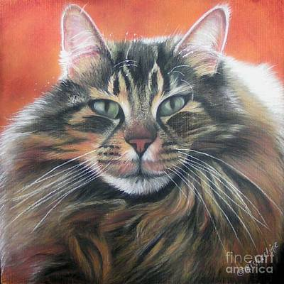 Pastel - Maine Coon Cat Portrait by Michaeline McDonald