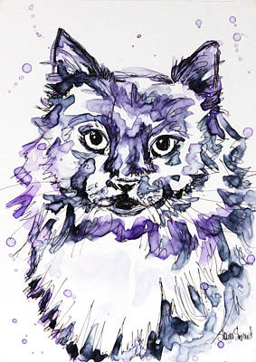 Maine Painting - Maine Coon In Purple by Shaina Stinard