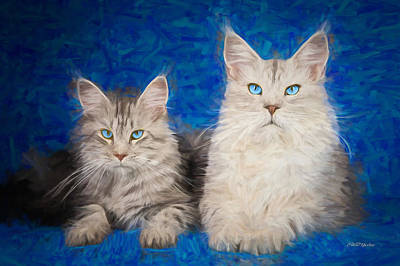 Painting - Maine Coon Kitties - Painting by Ericamaxine Price