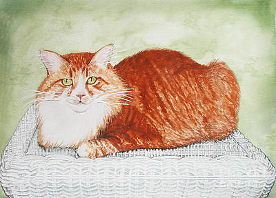 Painting - Maine Coon Portrait by Laura Brightwood