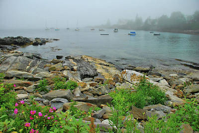 Photograph - Maine Cove by Allen Beatty