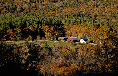 Art Print featuring the photograph Maine Fall Colors by Gary Cloud