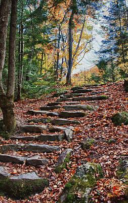 Photograph - Maine Fall Foliage by Jeff Folger