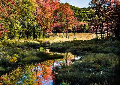 Photograph - Maine Fall Foliage Reflection by Jeff Folger