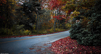 Photograph - Maine Foliage 3 by Debra Forand