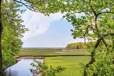 Photograph - Maine Land Trust Framed In Green by Joni Eskridge