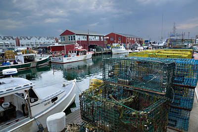 Photograph - Maine Lobster by Denis Lemay