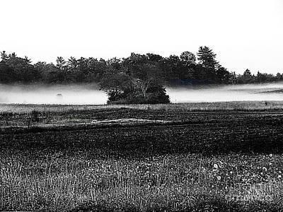 Photograph - Maine Mist  by Expressionistart studio Priscilla Batzell