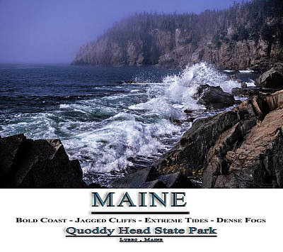Photograph - Maine Quoddy Head State Park by Marty Saccone