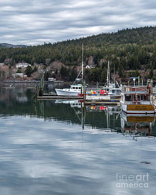 Photograph - Maine Reflections by Karin Pinkham