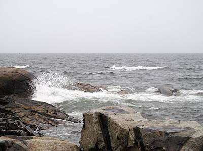 Photograph - Maine Rocks by Loretta Pokorny