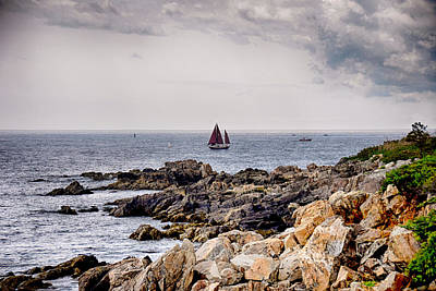 Photograph - Maine Sailing by Tricia Marchlik