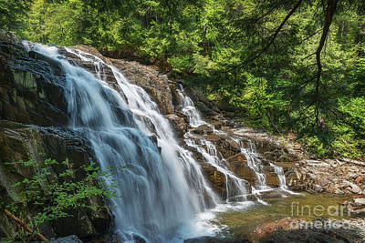Photograph - Maine Waterfall by Sharon Seaward