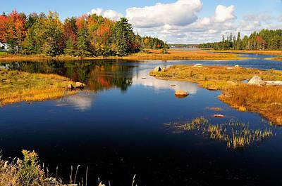 Maine Waterway Print by Betty LaRue