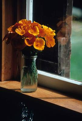 Maine Windowsill Art Print by Laurie Paci