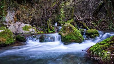 Photograph - Majaceite River Benamahoma Cadiz Spain by Pablo Avanzini