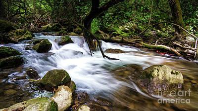 Photograph - Majaceite River El Bosque Cadiz Spain by Pablo Avanzini