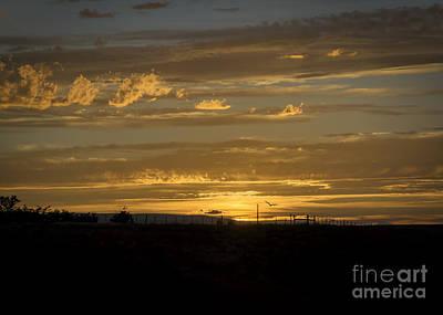 Valentines Day - Majestic Colorado Mesa Sunset by Janice Pariza