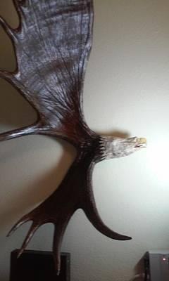 Majestic Eagle Original