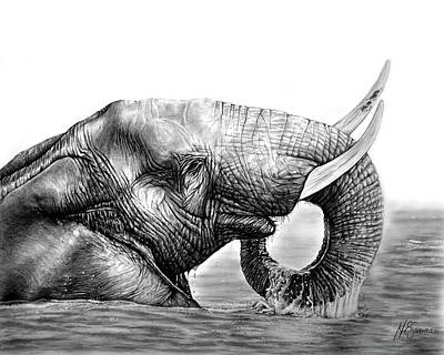 Drawing - Majestic Elephant by Heidi Kriel
