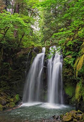 Photograph - Majestic Falls by Loree Johnson