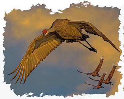 Crane Digital Art - Majestic Flight by Larry Linton