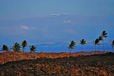 Majestic Mauna Kea Art Print by Bette Phelan